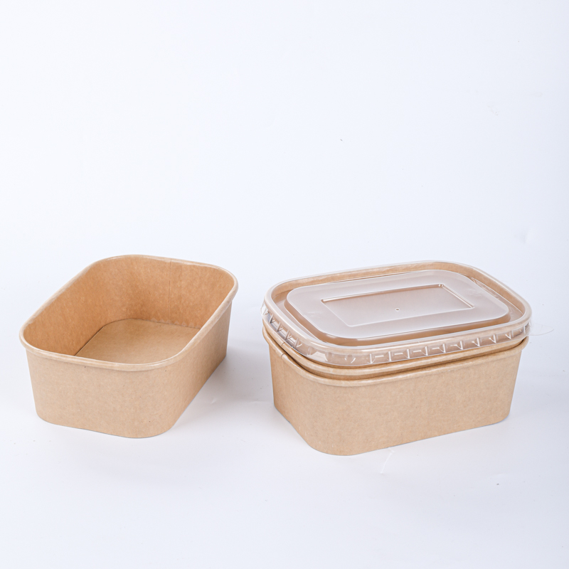 Hot food paper bowl with sealable lid